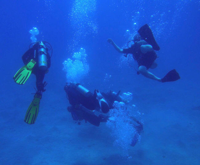 Tjekud dyk