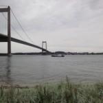 Dykkertræf i Lillebælt