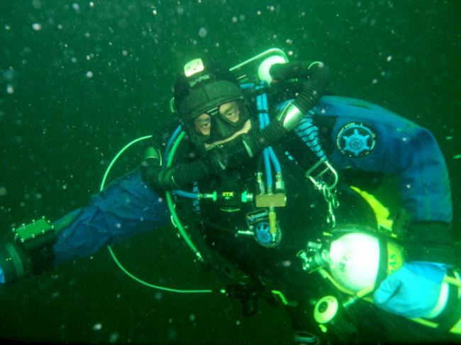 Glad dykker 1