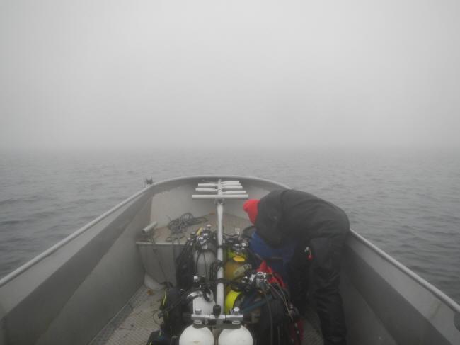 På vej igennem tågen