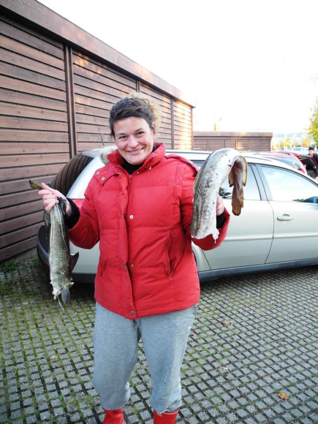 Lidt fisk