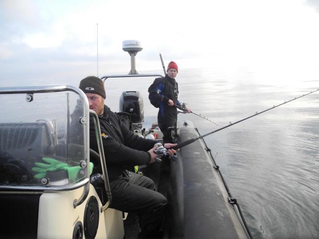 Fisk på loddet