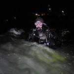 Trykkerdammen med Blæksprutte