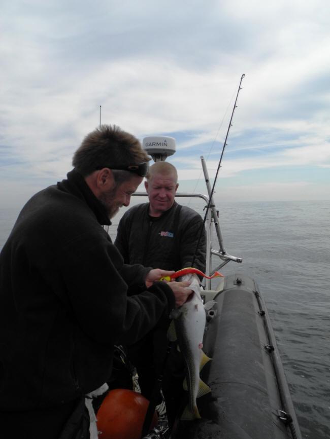 Lidt torske fiskeri