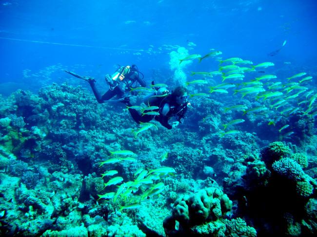Under båden