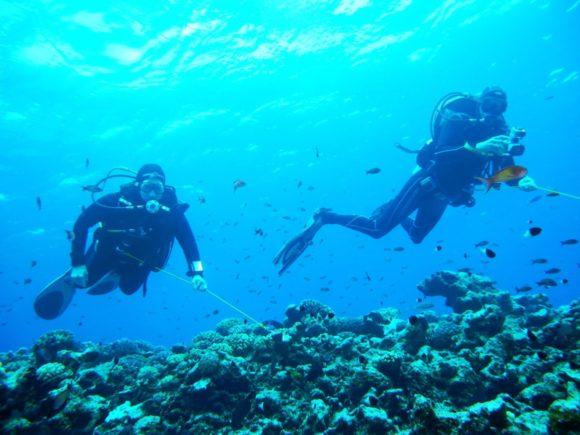 En reef-hook gør livet nemmere!