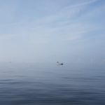 En dejlig dag på Øresund d. 6/10 2018