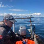 UV-jagt på Øresund d. 30/5 2020.