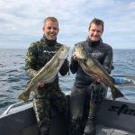 UV-jagt i Kattegat d. 25/7 2020 -Danmarksrekord på Danmarksrekord